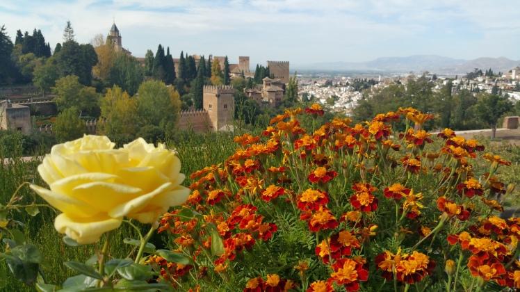 A view of the Nasrid Palaces. // Una visita de los palacios Nazaríes.